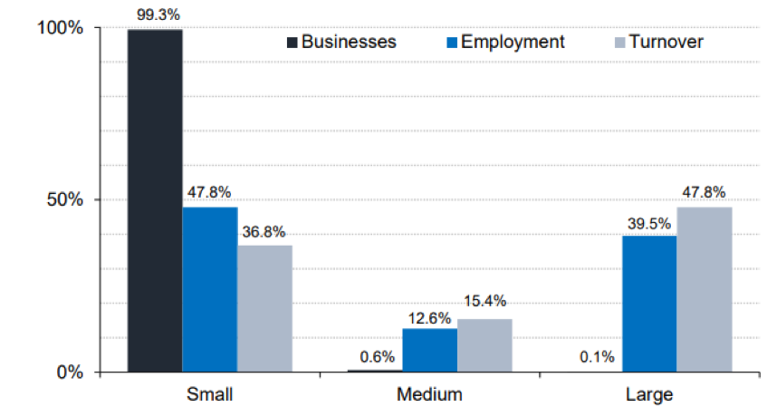 Figure 1 Small sized business in the UK