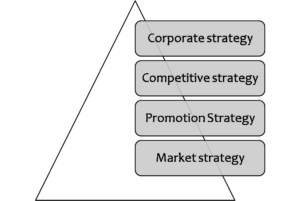 Recommend strategic options for the organisation